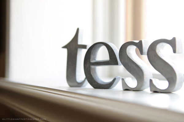 Wooden Letters Tess